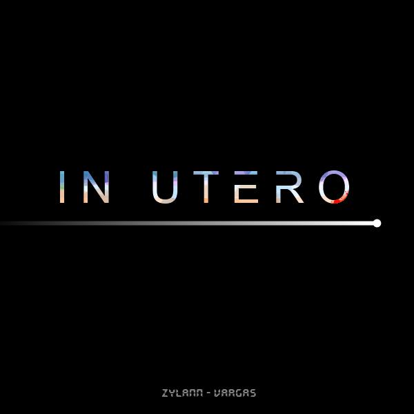 Pochette d'In Utero